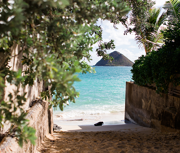 muse kailua | ミューズ カイルア